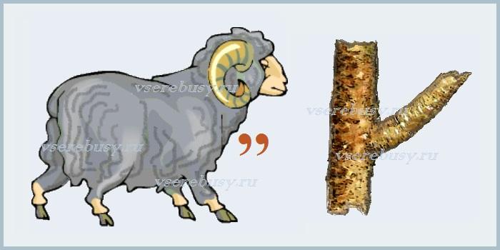 ребус барсук, ребусы про животных, ребус, ребусы, разгадать ребус, разгадывать ребусы, ребус с ответом, ребусы с ответами, картинки ребусы, ребусы на тему животные